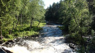 Photo: Речка Койриноя