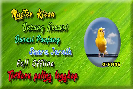 Masteran Kenari Isian MP3 - náhled