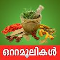 Ottamoolikal in Malayalam free app icon