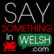 Say Something in Welsh