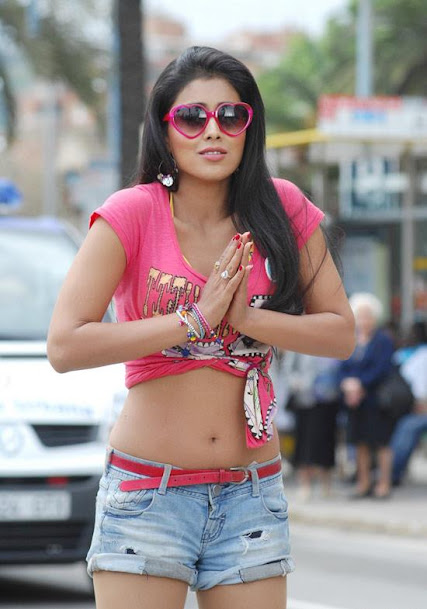 Shriya Saran navel