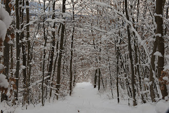 Photo: Looking back at the steep snowy path.