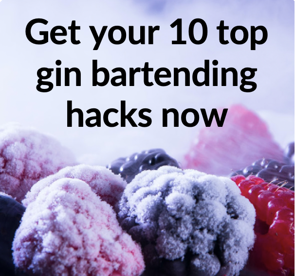 Get your 10 top gin bartending hacks now