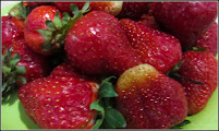 Photo: Căpșuni - (Fragaria ×ananassa) - din Piata Agroalimentara de pe Str. Tineretului - 2017.05.22 http://ana-maria-catalina.blogspot.com/2019/08/capsun-fragaria.html
