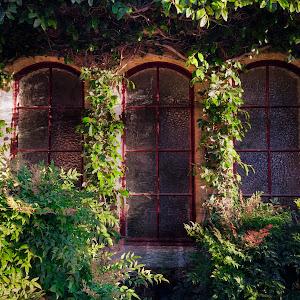 3 windows.jpg