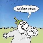 Karikatür Diyarı icon
