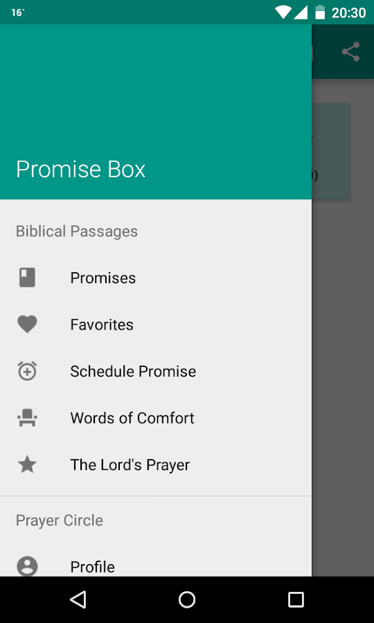 Promise Box- screenshot