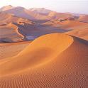 "Тест ""Куб в пустыне"" icon"