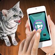 Training Cat Trinket Clicker