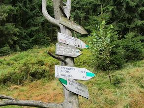 Photo: 20.Rozejście czerwonego (granicznego) i zielonego szlaku. Rogacz się zwalił i czeka na wymianę.