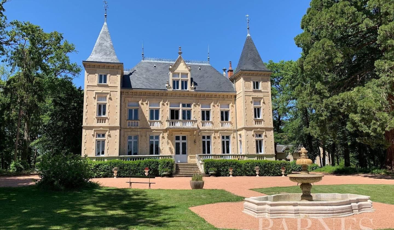 Castle Vichy