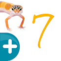Vector Z | Enlace Naturales 7 icon