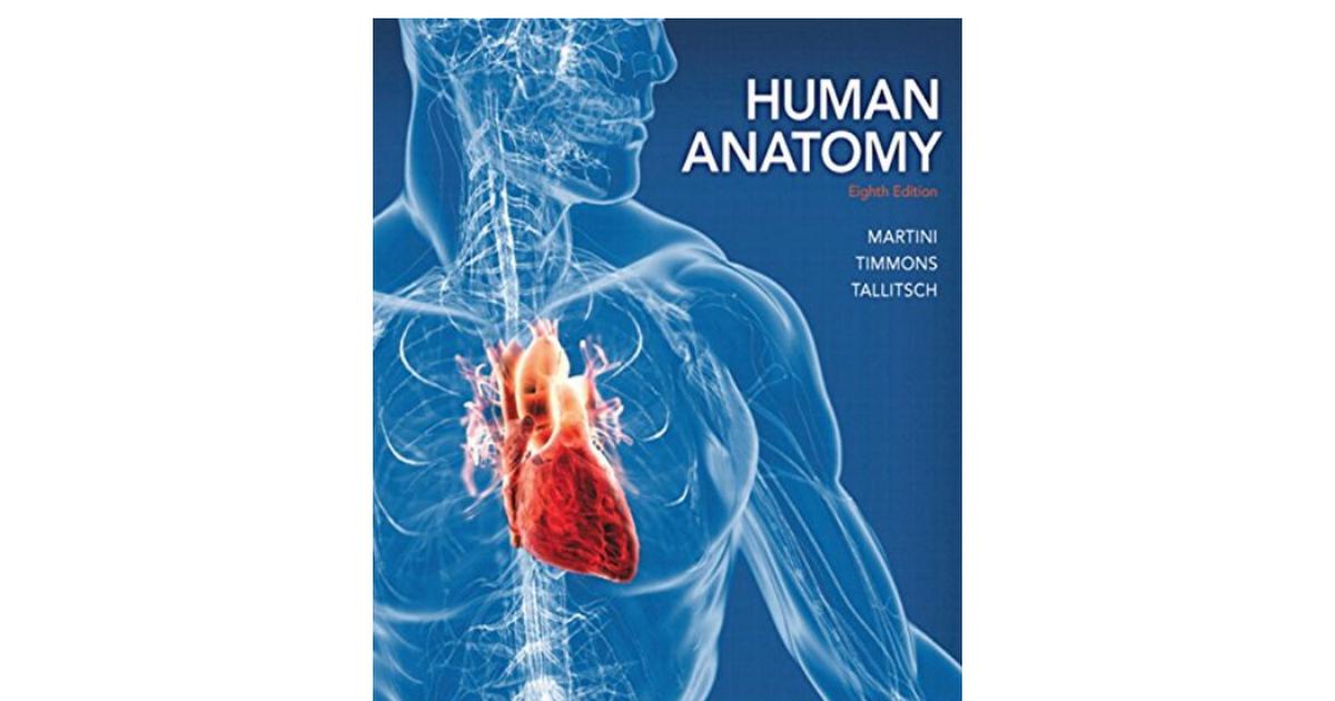 0321883322 Human Anatomy 8th Standalone Bookpdf Google Drive