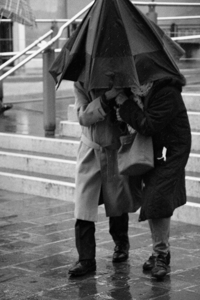 the rain di larame25
