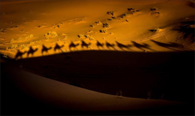 Carovana di alberto raffaeli