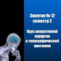 Оперативная хирургия практика №12 Семестр 2 icon
