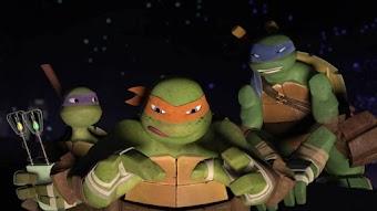 Slash la tortue