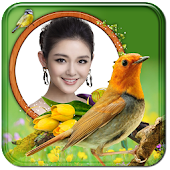 Birds Photo Frame: BPF