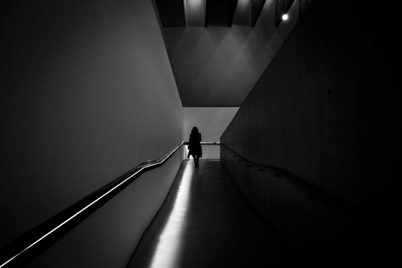 La via di luce di Gloria Staffa