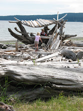 Photo: Day 4: There were a lot of driftwood buildings at Spencer's Spit. I think this storefront was the best example.