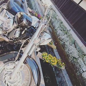 ソリオバンディット MA46Sのカスタム事例画像 にのさんの2020年04月17日21:52の投稿