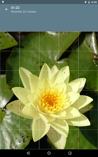 Jigsaw Puzzle: Flowers screenshot 22