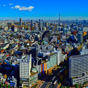Tokyo Aerial View by Kamal Kamaludin - Buildings & Architecture Public & Historical ( tokyo aerial tower city japan building view urban modern asia skyscraper high cityscape architecture skyline travel sky downtown asian buildings capital office street town metropolis business japanese metropolitan tall tourism )
