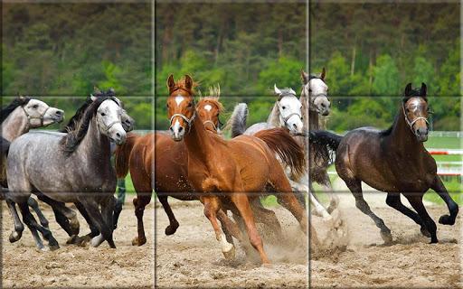 Puzzle - Beautiful Horses 1.24 screenshots 5