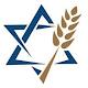 Jewish Voice Download on Windows