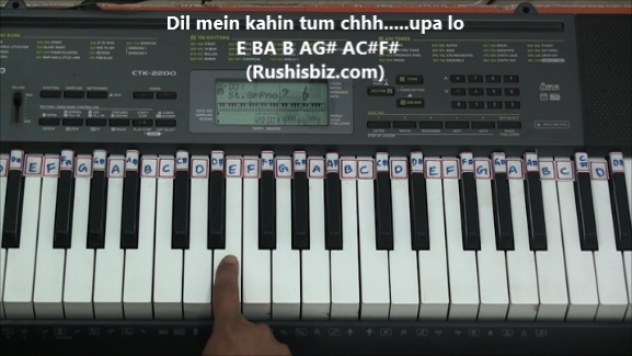 Piano Notes(Ad Free) RushisBiz- screenshot