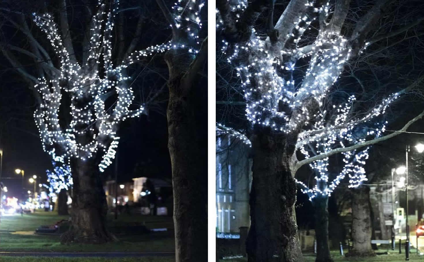 Photos Tenterden Christmas Lights 2015