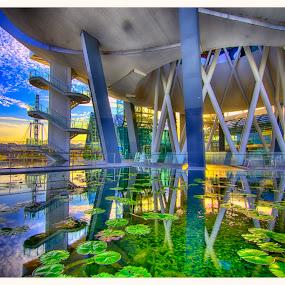 Singapore ArtScience Museum by Jashper Delloroso - Buildings & Architecture Public & Historical ( pwcarcreflections, reflection, hdr, singapore artscience museum, artscience museum, museum, sg, singapore,  )
