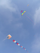 Photo: Large (and not so large) single line kites