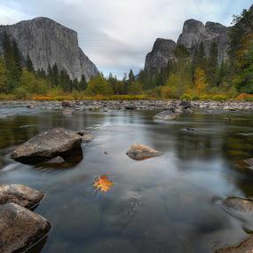 Yosemite Valley by Josh Norem - Landscapes Mountains & Hills ( sierras, yosemite, el capitan, california, sunset, rivers )