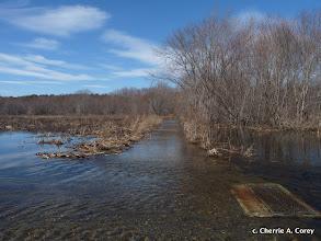 Photo: Dike Trail, east end