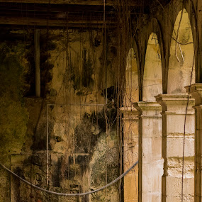 Mosteiro de Seiça by Edu Marques - Buildings & Architecture Decaying & Abandoned ( old house, old, ancient, old town, house, landscape, antiques )