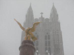 Photo: Crazy Winter 2011