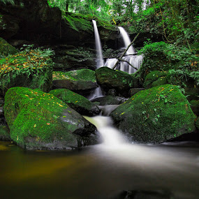Waterfalls by Gurung Purna - Landscapes Waterscapes ( water, green, falls, white )