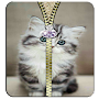 Kitty Zipper lock screen APK icon