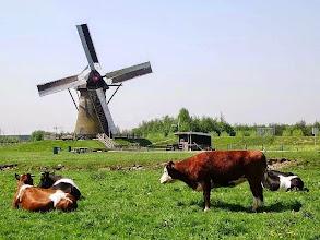 Photo: Nederland - Natuur - Landschap met molen Foto: Nathalie van de Linden