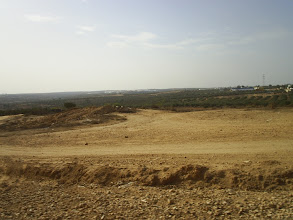 Photo: Тунис 2008