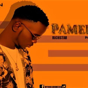 Cover Art for song Pamela[Pro.DrJMIXX