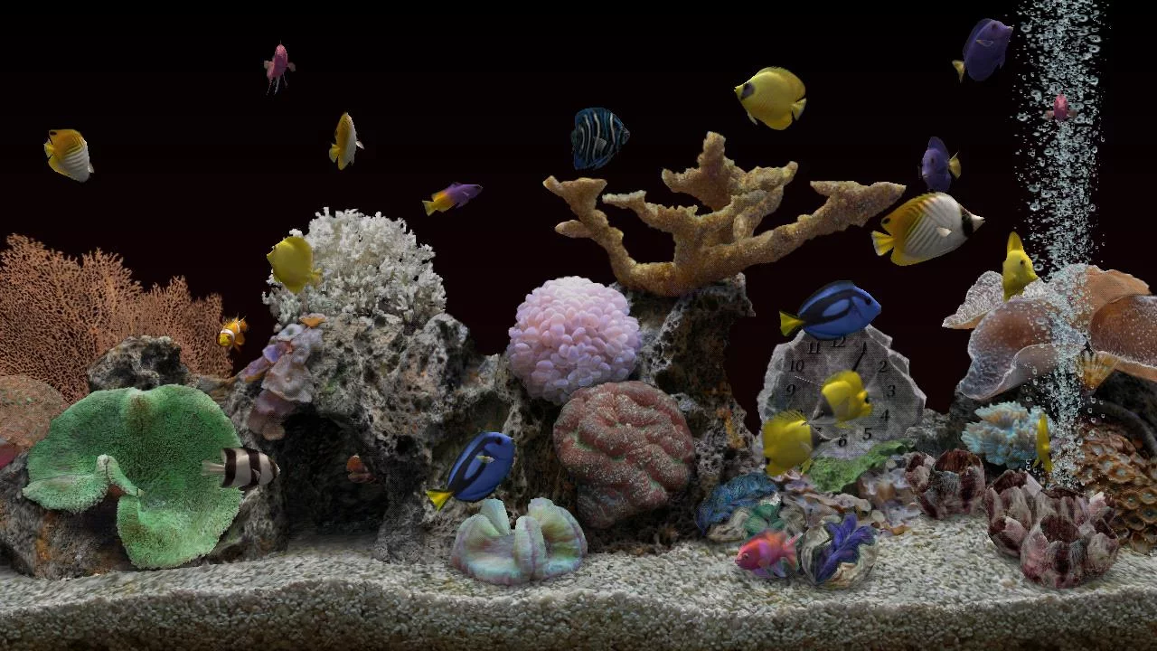 Marine aquarium 3 3 android apps on google play for Fish tank app