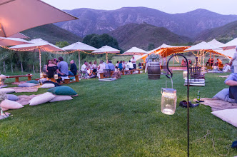 Photo: Awesome picnic wedding on the meadow