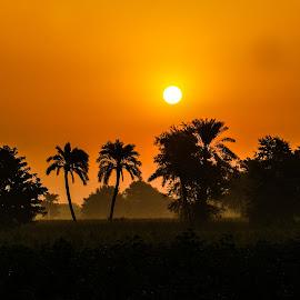 by Mohsin Raza - Landscapes Sunsets & Sunrises (  )