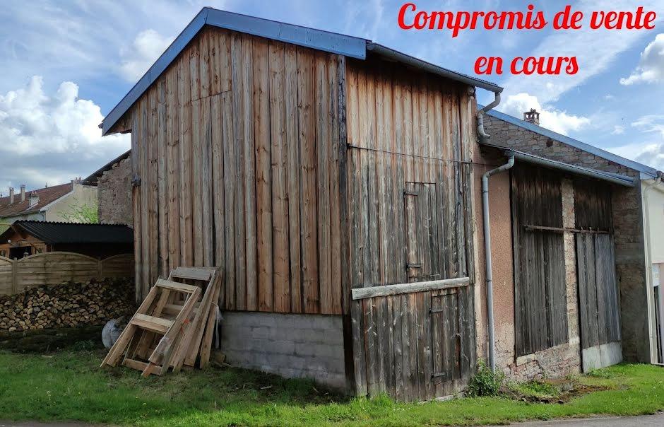 Vente locaux professionnels 2 pièces 110 m² à Neufmaisons (54540), 19 900 €