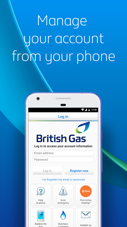 British Gas- screenshot