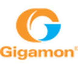 Gigamon llc 2012 unit option plan option agreement by gigamon gigamon llc 2012 unit option plan option agreement platinumwayz