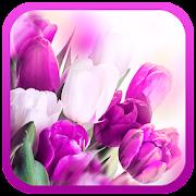 Tulips Purpl live wallpaper