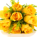 Yellow Roses Wallpapers icon